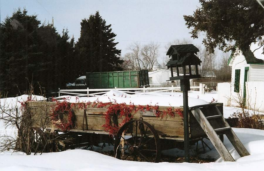 cgs wagon in winter